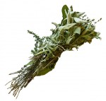 Файл:Bouquet garni p1150476 extracted.jpg